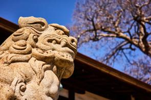 太田市で参拝に行くならここ!おすすめの神社を紹介の画像