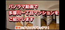 パノラマ写真で「多摩川1丁目マンション」をご案内!の画像