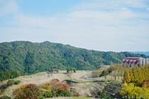 福岡市で暮らしたい方必見!南区の住みやすさのポイントをご紹介!の画像