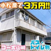 3月27日☆賃貸情報の画像