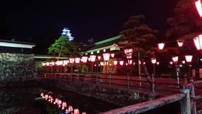 帰り道を彩るピンクの光~高知城の画像