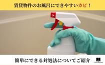 賃貸のお風呂にできやすいカビの対処法と予防法の画像