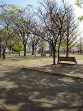 【公園情報】緑が丘公園船出広場の画像