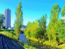 【コラム】自然と利便性の融合エリア!「札幌市西区」の住みやすさとは?の画像