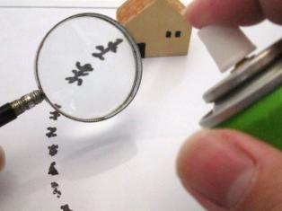 賃貸管理で虫が発生したときの対処法や駆除費用の負担についての画像