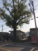 町内会の総会に初めて参加した件について(那珂川市山田)の画像