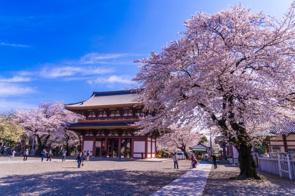 大田区に住むなら訪れておきたいおすすめ寺院2選の画像