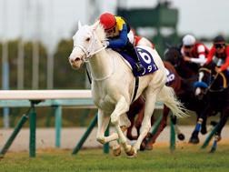 【2021年桜花賞】白馬の女王ソダシ!の画像