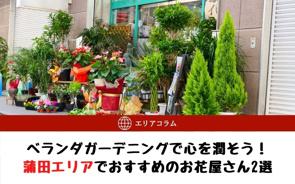 ベランダガーデニングで心を潤そう!蒲田エリアでおすすめのお花屋さん2選の画像