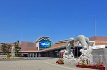 水族館!!!の画像