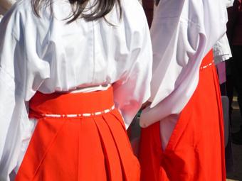 品川区周辺で神社へ参拝しよう!おすすめの神社2選!の画像