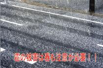 雹の被害は春も注意が必要!!の画像