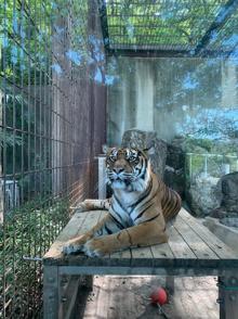 東山動植物園!~CENTURY21関西エース不動産~の画像