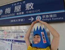 梅屋敷(うめやしき)駅の画像