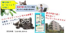 ペット可物件★小型犬・猫★ルームシェア相談可★1LDKの画像