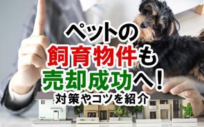ペットの飼育物件も売却成功へ!対策やコツを紹介の画像