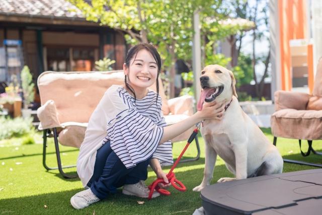 賃貸で大型犬を飼いたい人が知っておくべきポイントを解説の画像