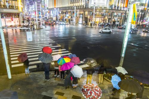 梅雨入りですね☆の画像