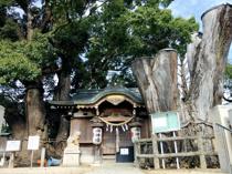六甲道駅周辺のおすすめ神社を紹介!歴史や人気の理由は?の画像