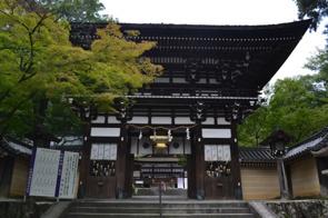 京都のおすすめ観光地!嵐山のパワースポット松尾大社の見どころとはの画像
