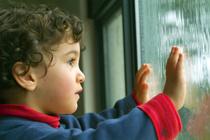 雨の日に観たい映画の画像