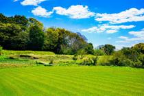 農地買い取りの流れとは?宅地として使うためには手続きが必要の画像
