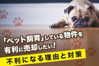 「ペット飼育」している物件を有利に売却したい!不利になる理由と対策の画像