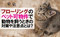 フローリングのペット可物件で動物を飼うときの対策や注意点とは?の画像