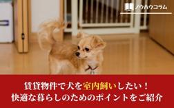 賃貸物件で犬を室内飼いしたい!快適な暮らしのためのポイントをご紹介の画像