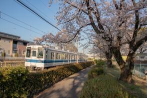 太田市竜舞駅周辺の住みやすさについて買い物や子育てのしやすさから見てみよう!の画像