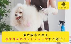東大阪市にあるおすすめのペットショップをご紹介!の画像