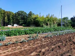 農地に家は建てられない!農地を相続するときに考えたい「農地転用」の画像