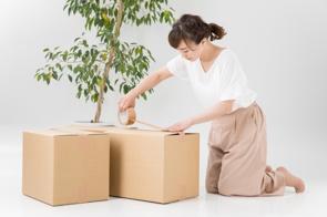 賃貸物件の引越しは荷造りが鍵!おすすめのスケジュールの組み方やコツとはの画像