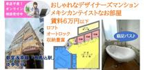 ラテン調の明るい個性的な部屋に住みませんか?賃料6万円!の画像