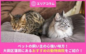ペットの飼い主の心強い味方!大田区蒲田にあるおすすめの動物病院をご紹介!の画像