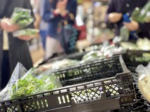 尼崎市の地産地消の取り組みに注目!野菜のブランド化や直売所情報をチェック!の画像