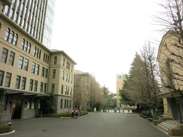 新宿周辺のおすすめ文化スポット早稲田大学 會津八一記念博物館とは?の画像