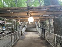 二宮神社の御朱印の画像