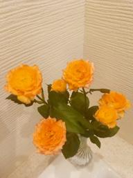 今週のお花~の画像