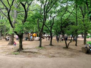 『井草森公園』の画像