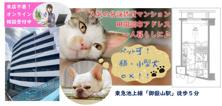 ペット可★分譲賃貸マンション★田園調布アドレス!の画像