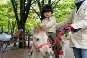 南アルプス市乗馬センターで外遊び!ホースセラピーやアクティヴィティも体験!の画像