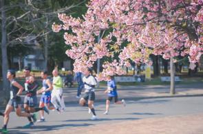 9月12日【マラソンの日】の画像