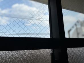賃貸物件に使用されている窓ガラスの種類とはの画像