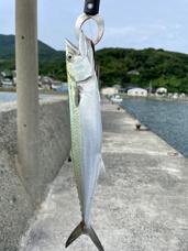 宗像市、岡垣町方面は本格的な釣りシーズン到来!?の画像
