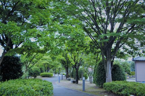 松山市の公園のご紹介・二之丸史跡庭園とは?の画像