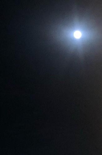 中秋の名月の画像