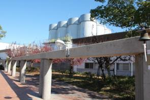 ビール好きにピッタリ!兵庫県神戸市キリンビール神戸工場を見学しようの画像
