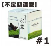 10月7日:【不定期連載】育てる水草#1の画像