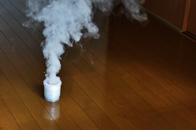 くん煙剤の使用がおすすめ!賃貸物件で知っておきたい防虫対策の画像